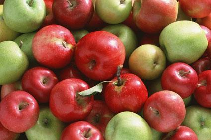 Jesienne owoce - czy warto je jeść?