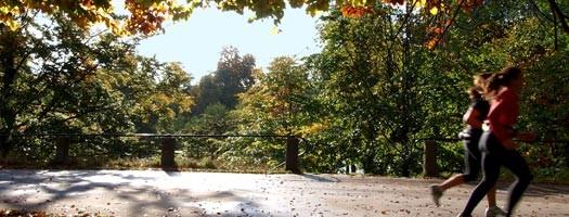 Aktywna jesień